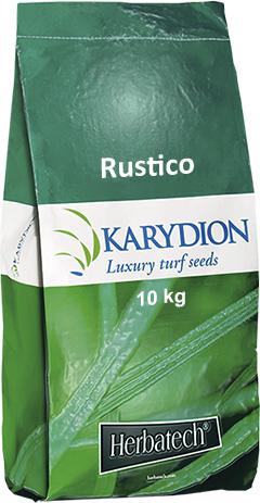 Semi per prato rustico e resistente per nuove semine